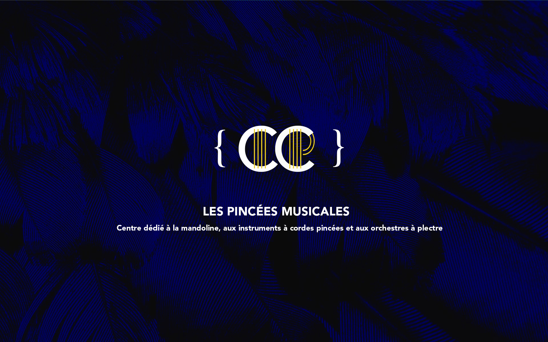 les-pinces-musicales-agence-ysee